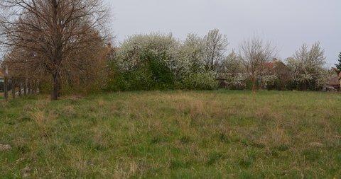 Novo Selo,Poljoprivredno zemljište