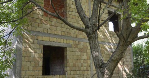 Aleksandrovo,Kuća