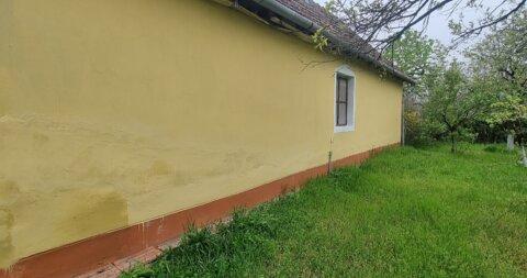 Donji Tavankut,Kuća